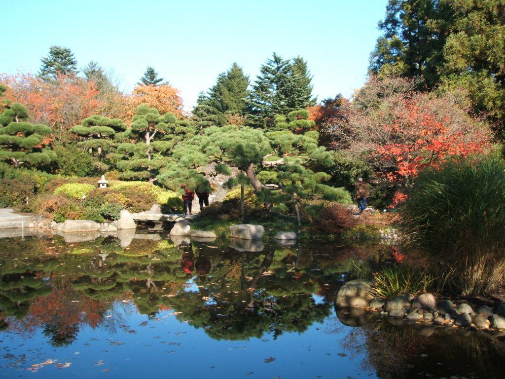 Bild Japanischer Garten Zu Botanischer Garten Klein Flottbek In
