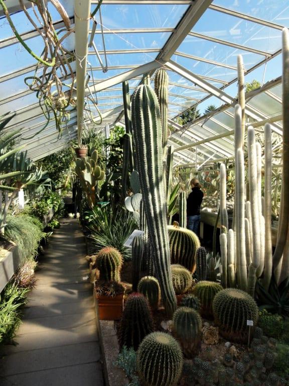 Bild Botanischer Garten Erlangen Zu Botanischer Garten Der
