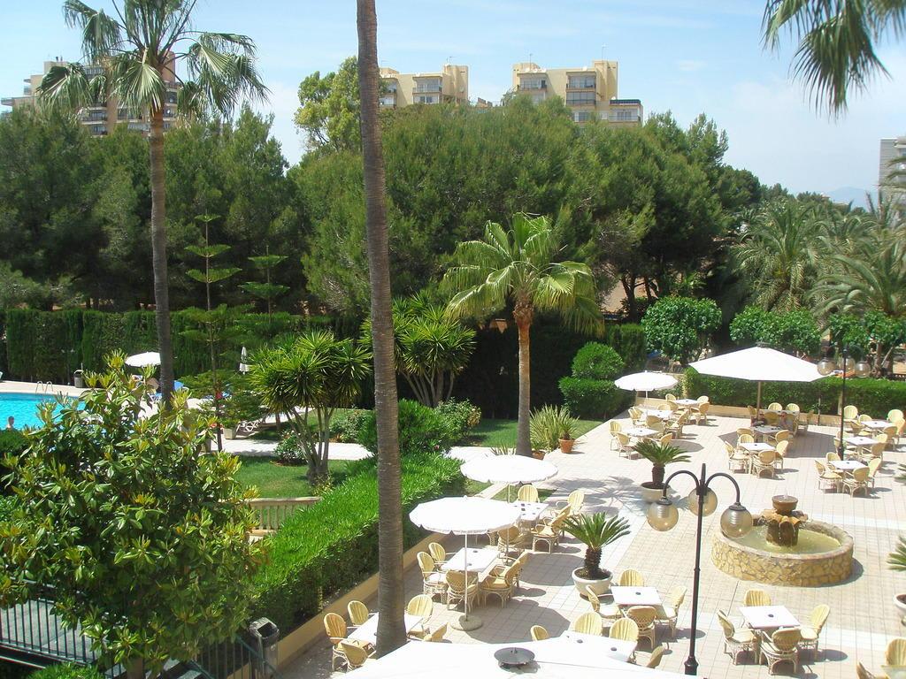 bild sch ne aussicht zu hotel metropolitan playa in playa platja de palma. Black Bedroom Furniture Sets. Home Design Ideas
