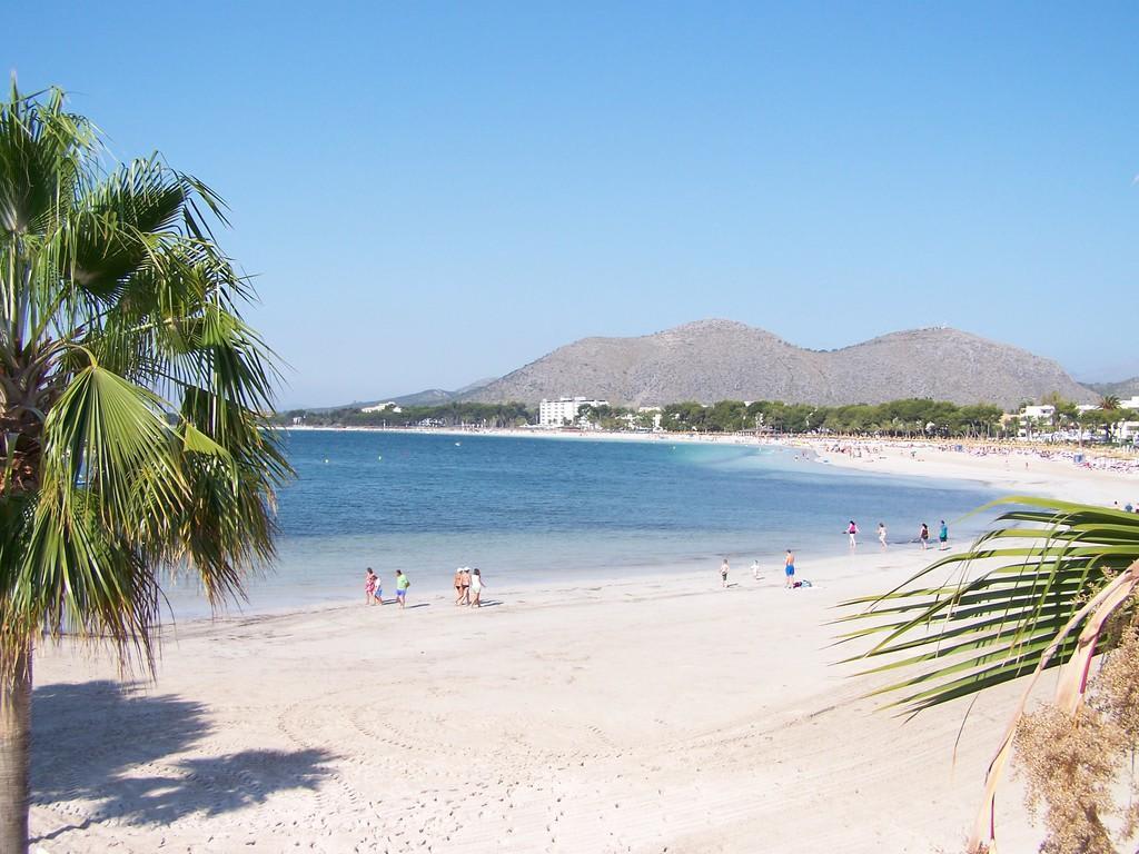 Bild Quot Blick Von Der Promenade Quot Zu Strand Alcudia In Alcudia
