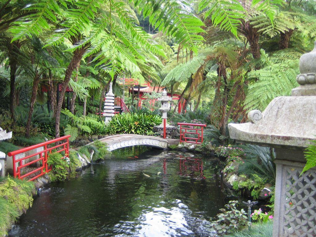 bild japanischer garten zu monte palace tropical garden. Black Bedroom Furniture Sets. Home Design Ideas