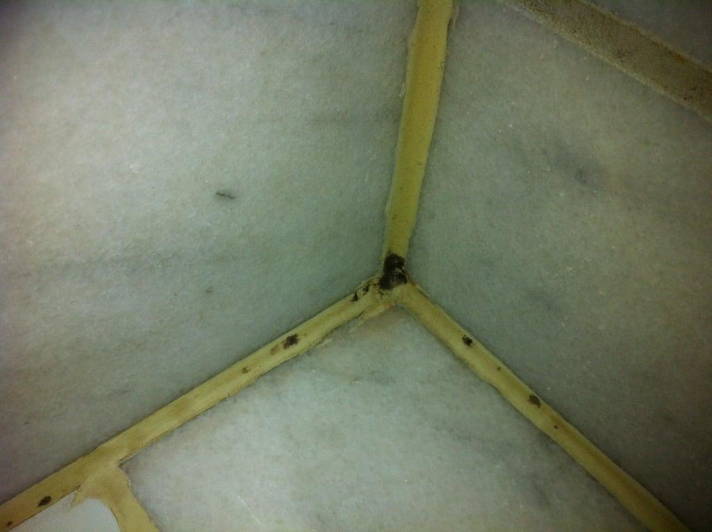 bild schimmel in der dusche zu hotel stadt altona in hamburg altona. Black Bedroom Furniture Sets. Home Design Ideas