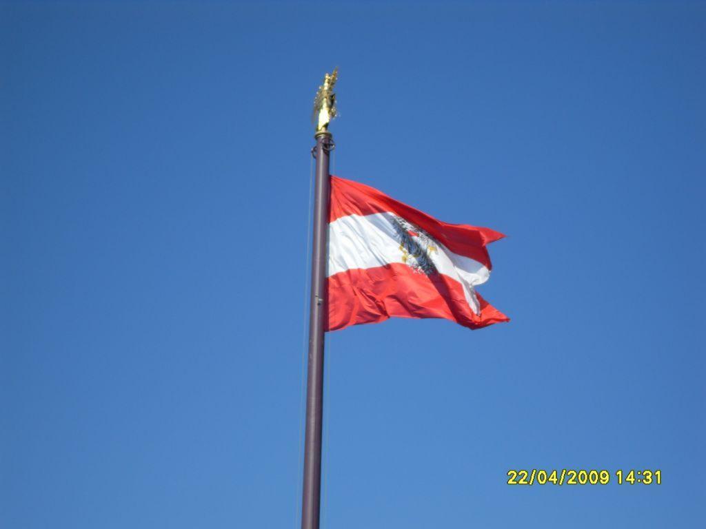 Bild Die österreichische Fahne Zu Parlament In Wien