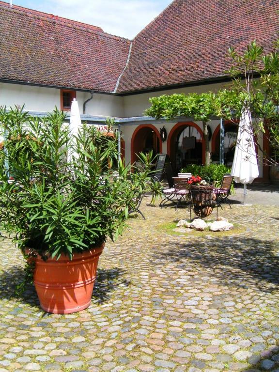 """wein im garten, bild """"""""wein""""garten"""" zu restaurant lindenhof in müllheim, Design ideen"""