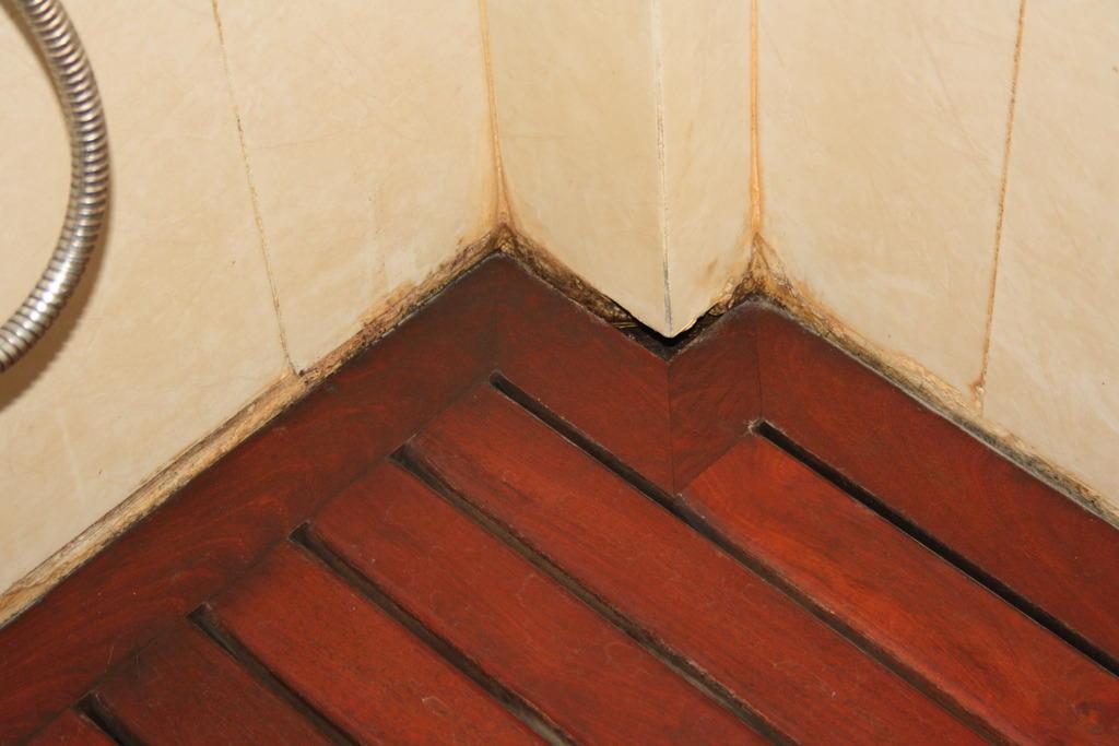 Dusche Holzboden : Bodengleiche Dusche Holzboden : Ebenerdige Dusche ...
