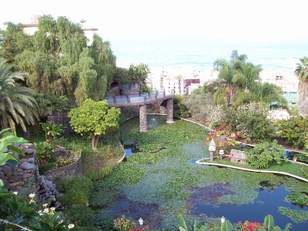 Bild taoro park zu jard n acu tico risco bello in puerto for Jardin acuatico