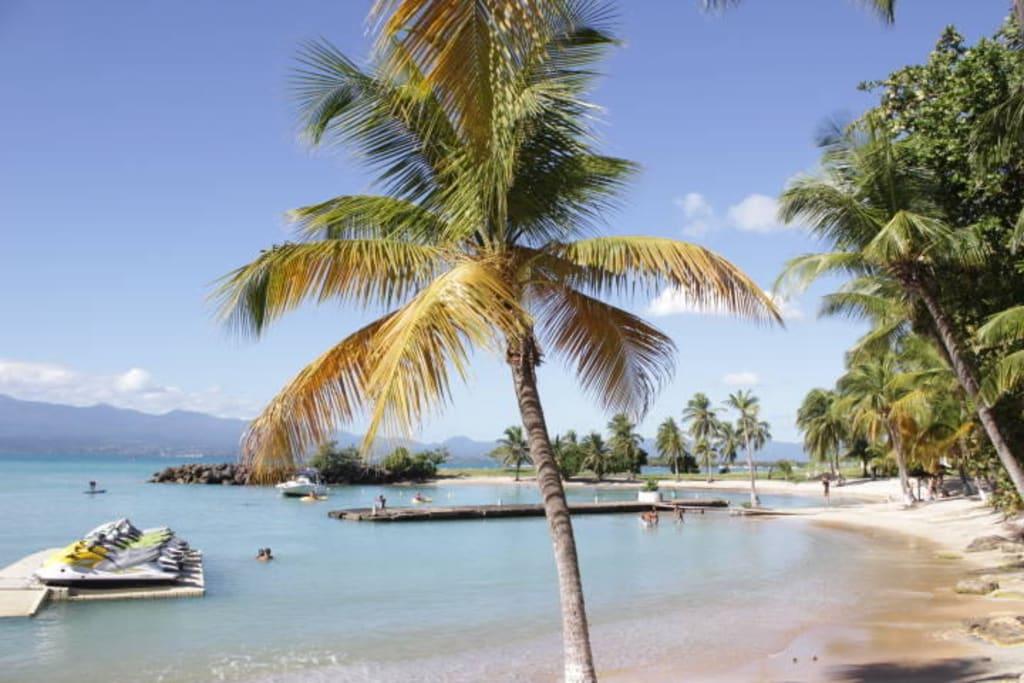 Bild Stadtstrand Guadeloupe Plage De Bas Du Fort Zu îlet De Gosier In Le Gosier