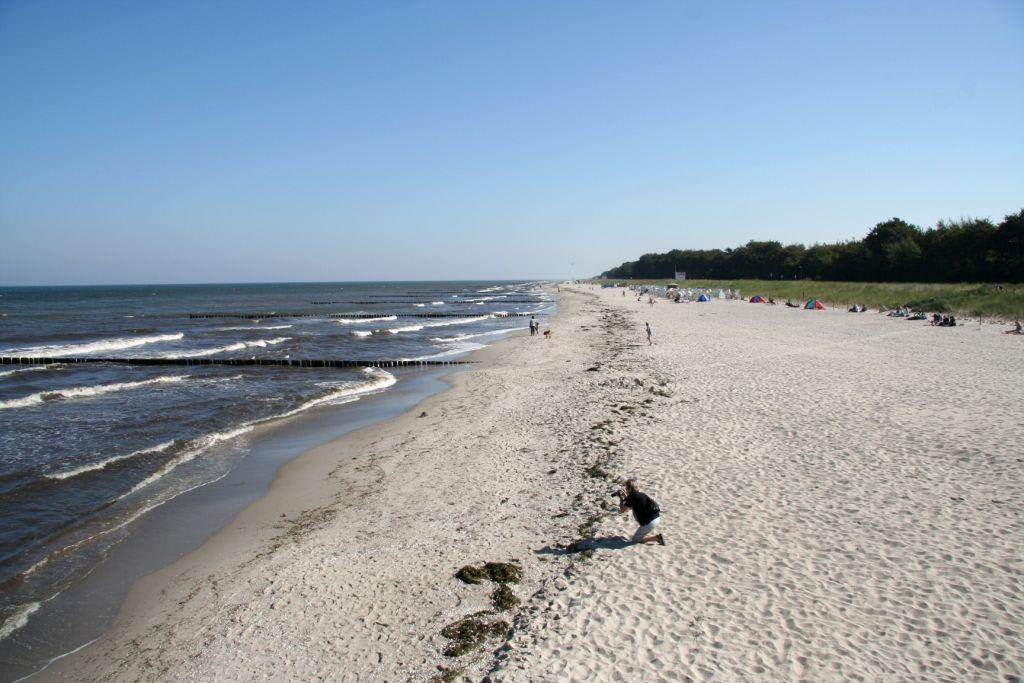 forum devot swinger strand ostsee