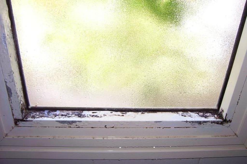 Dusche Am Fenster : da freut man sich doch gerade wenn man am duschen ist und so was vor