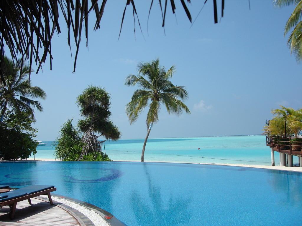Bild ausblick vom pool aufs meer zu hotel vilu reef for Design hotels am meer