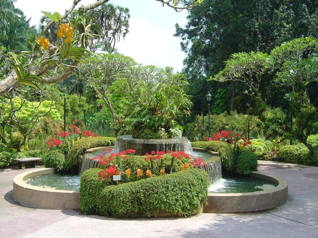bild botanischer garten singapur zu botanischer garten singapur in singapur. Black Bedroom Furniture Sets. Home Design Ideas