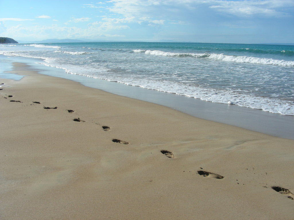 bild spuren im sand