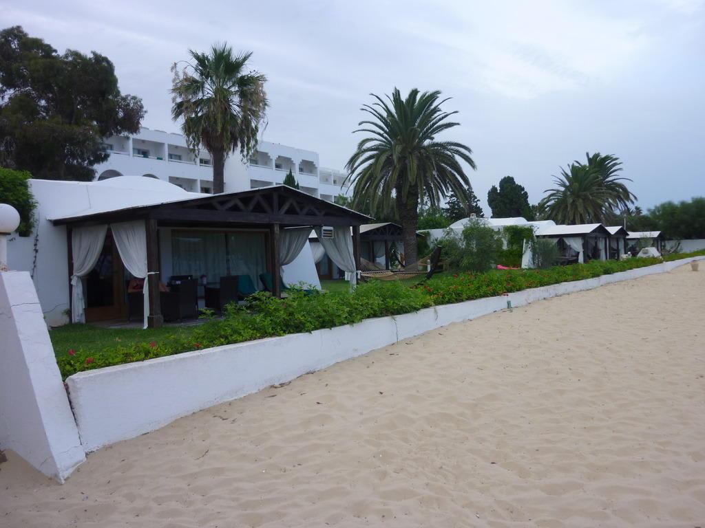 bild sch ne gro e bungalows am strand zu hotel les orangers beach resort in hammamet. Black Bedroom Furniture Sets. Home Design Ideas