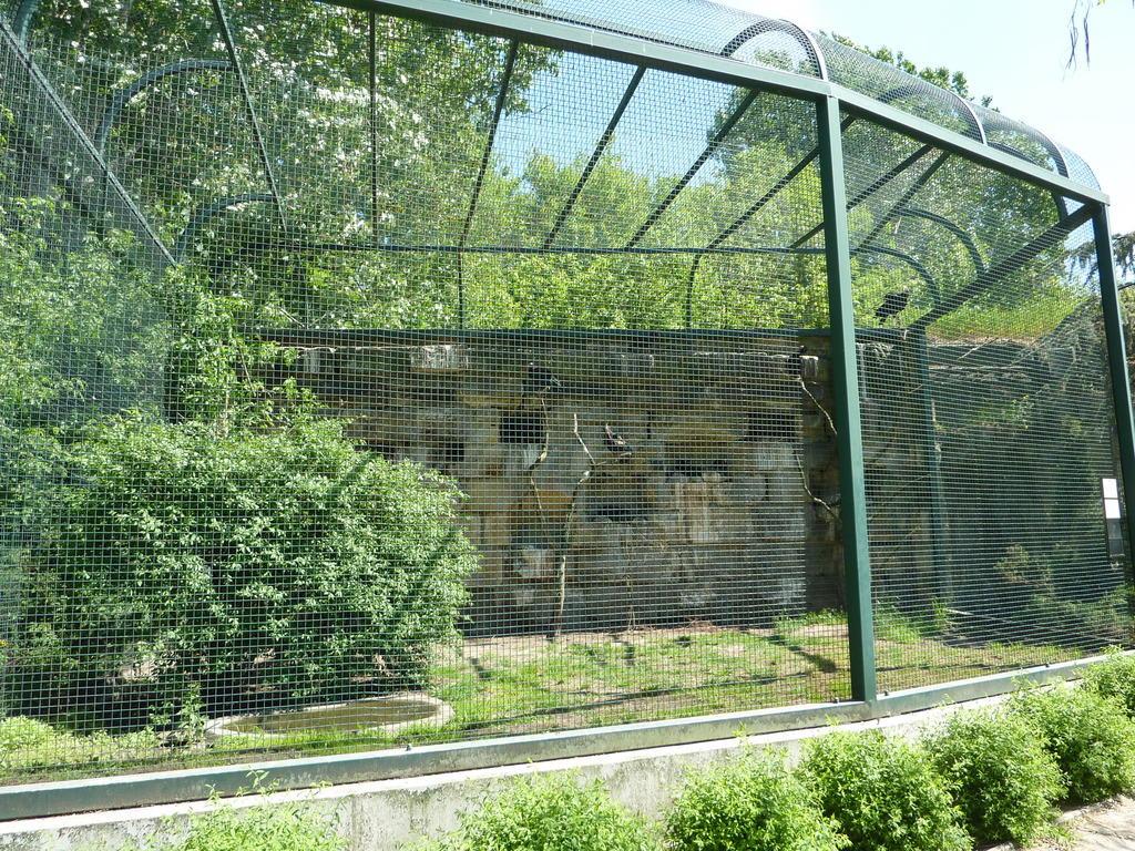 bild gro e voliere zu tierpark friedrichsfelde in berlin lichtenberg. Black Bedroom Furniture Sets. Home Design Ideas