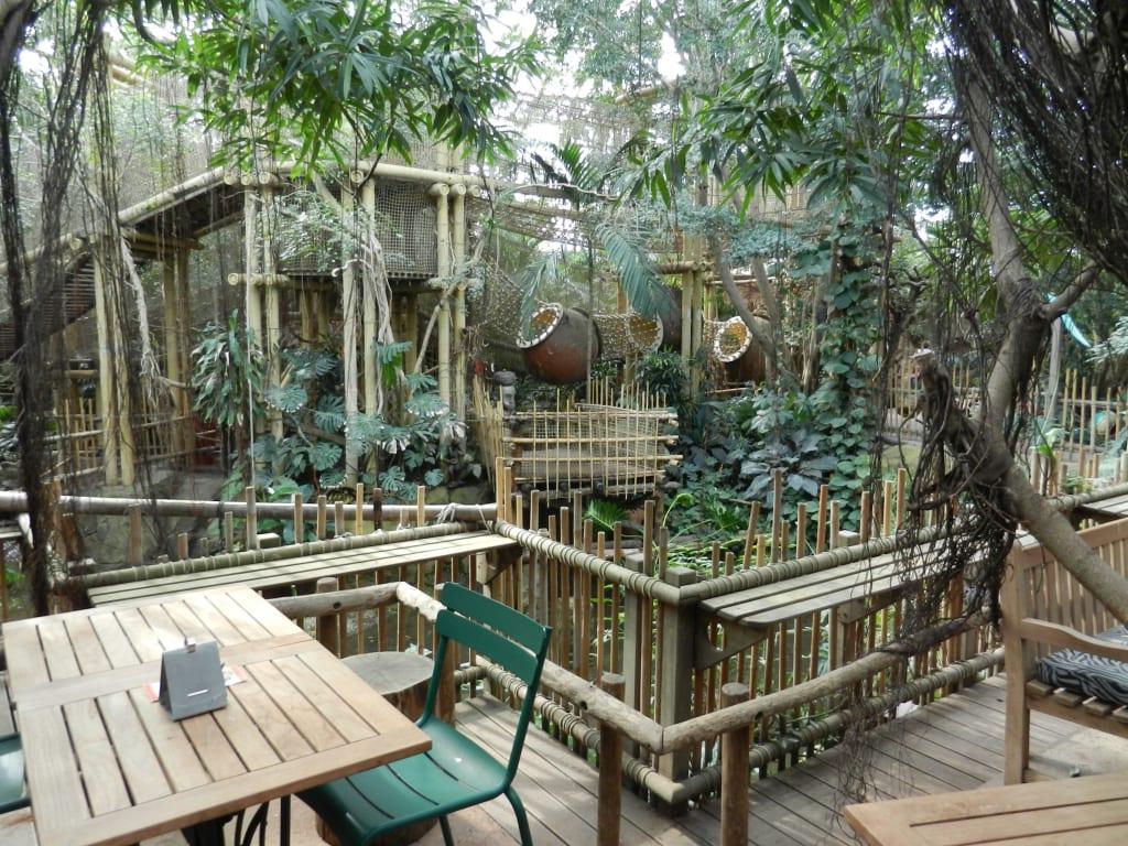 bild jungle dome zu center parc het heijderbos in gennep. Black Bedroom Furniture Sets. Home Design Ideas