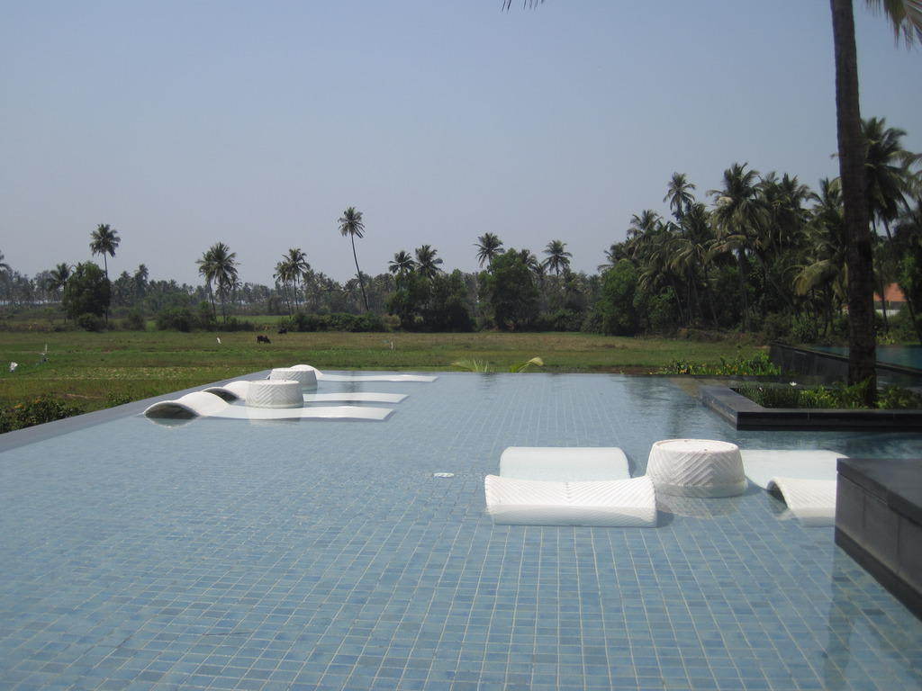 bild infinity pool zu hotel alila diwa goa in varca beach. Black Bedroom Furniture Sets. Home Design Ideas