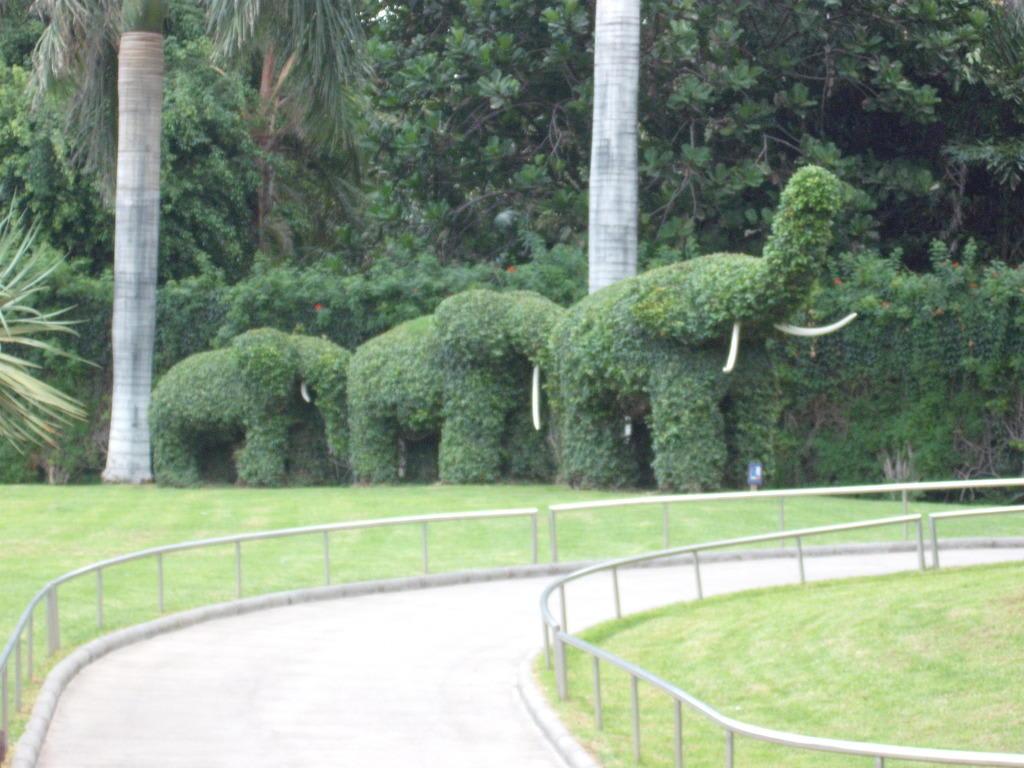 """Bild """"Schöne Hecke"""" zu Loro Parque in Puerto de la Cruz"""