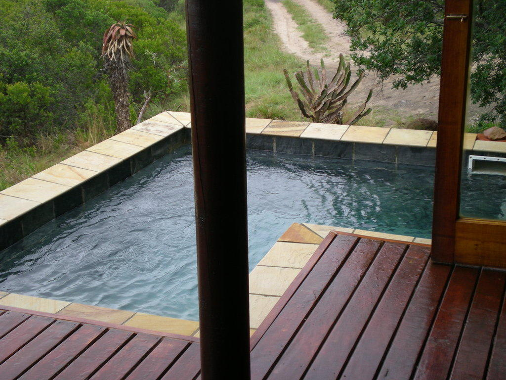 bild kleiner pool auf der terrasse zu kariega game reserve in kenton on sea. Black Bedroom Furniture Sets. Home Design Ideas