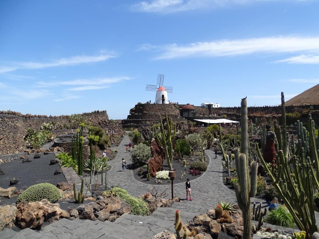 "Bild ""Jardin de Cactus"" zu Inseltouren mit Guidos Taxi Lanzarote ..."