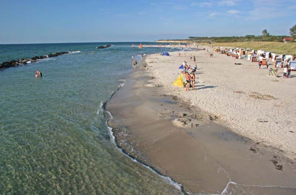 Bild Wustrow Strand zu Strand Wustrow in Wustrow