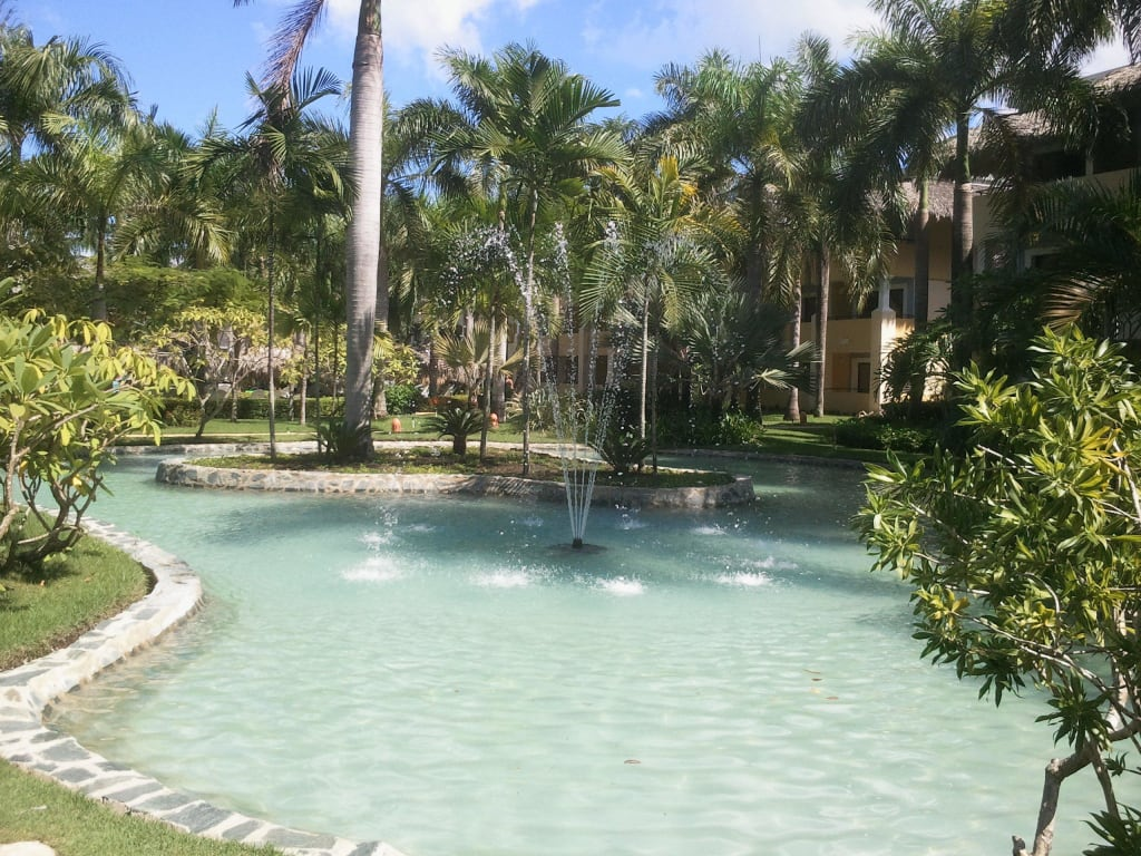 Bild gartenteich zu iberostar hotel costa dorada in for Gartenteichanlagen bilder