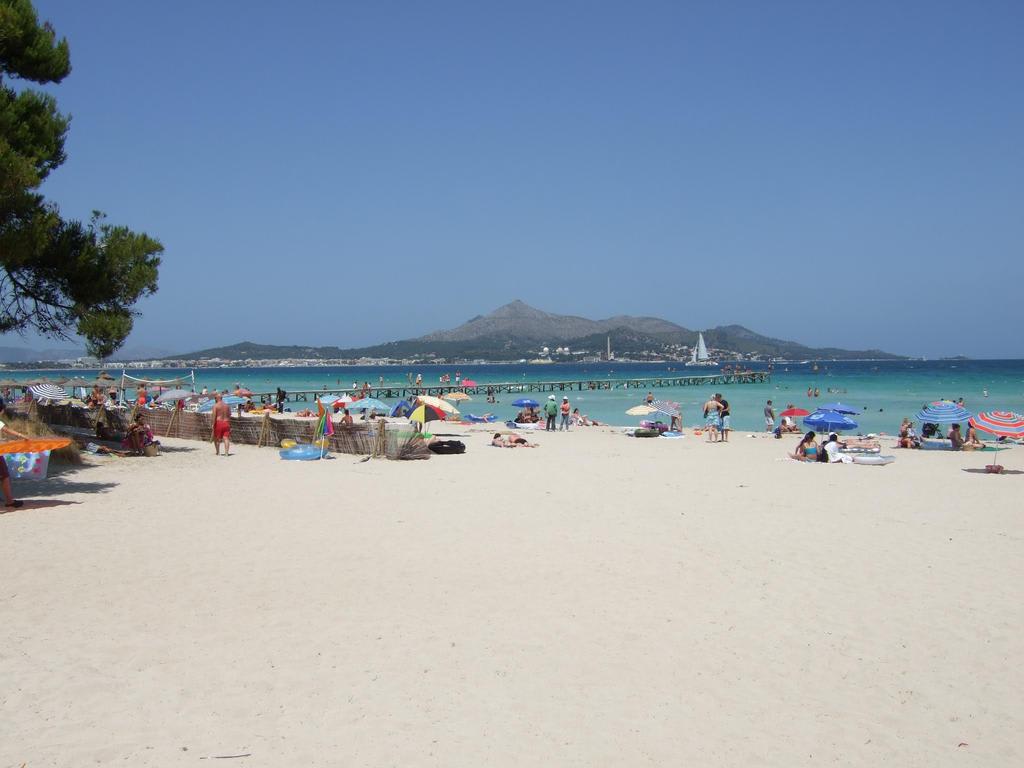 hotel playa alcudia: