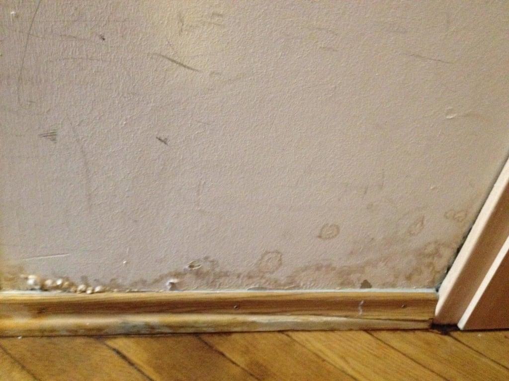 """Hotel M?nchen Dusche Im Zimmer : Bild """"Wasserschaden durch defekte Dusche"""" zu Hotel Atlas Residence"""
