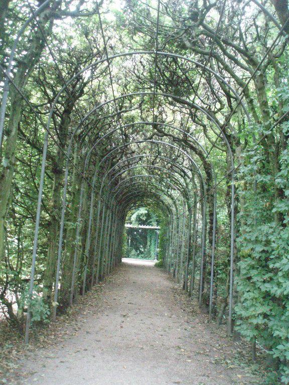 """Bild """"Botanischer Garten"""" Zu Flora Und Botanischer Garten"""