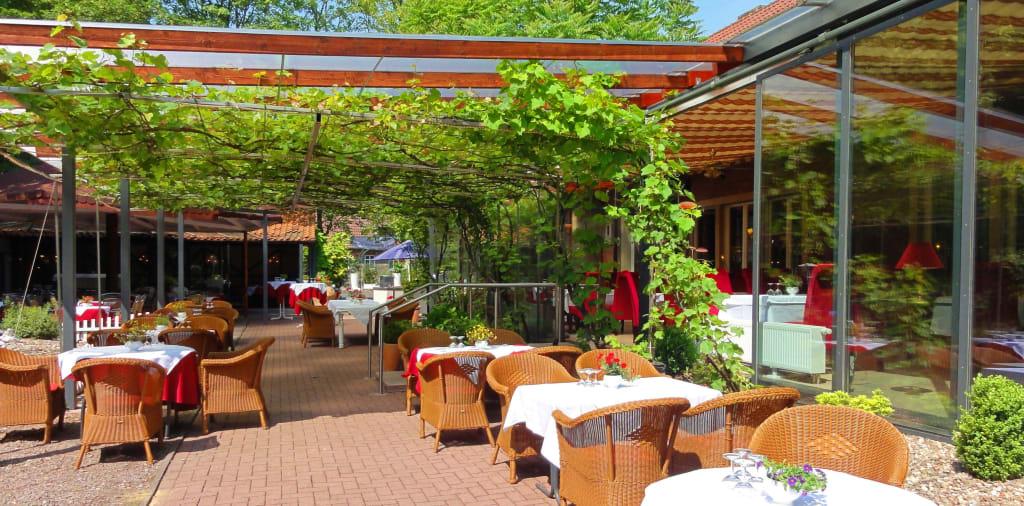 Bild weinreben wintergarten im sommer zu hotel for Deko wintergarten