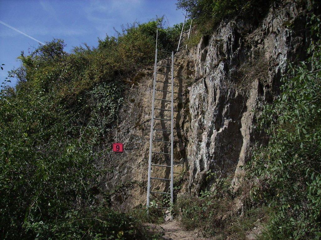 Klettersteig Rheinsteig Boppard : Wandern fast vor der haustür mittelrhein klettersteig boppard