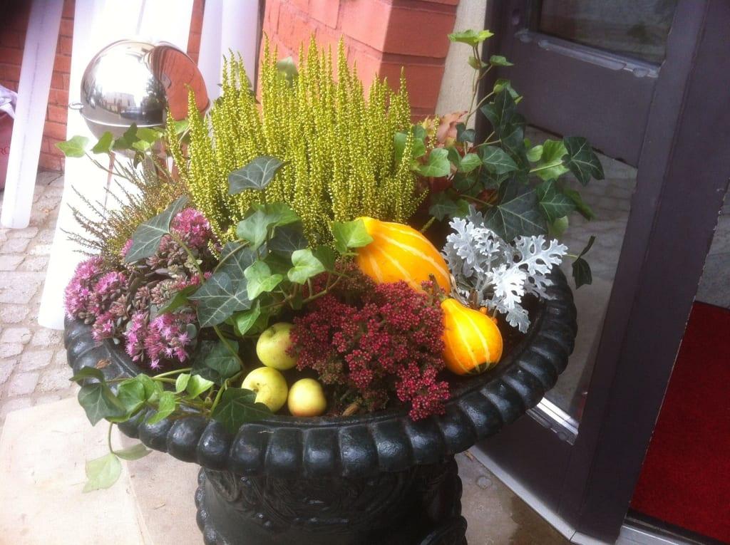 Herbstdeko Bilder Lobby & Eingang Hotel Villa Monte Vino