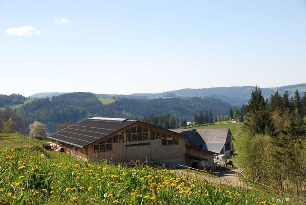 ... Hotel Oberwölz in Oberwölz • HolidayCheck | Steiermark Österreich