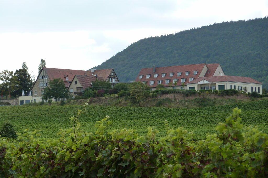 Leinsweiler Hof Hotel