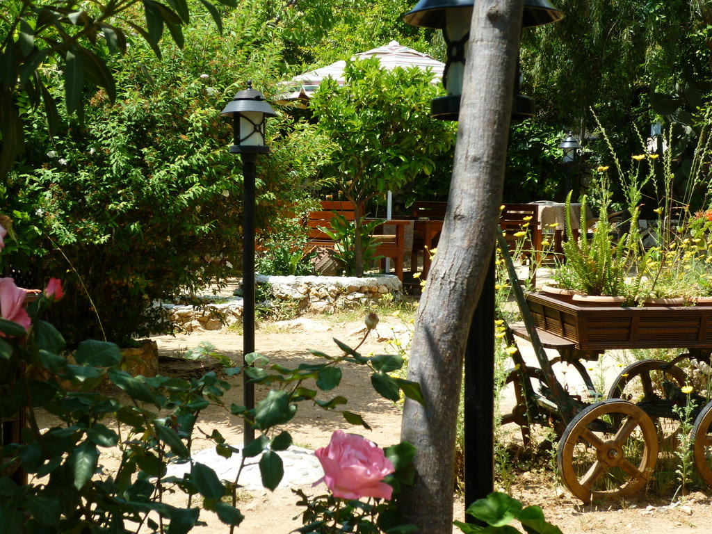 download ein romantischer garten | siteminsk, Garten und Bauten