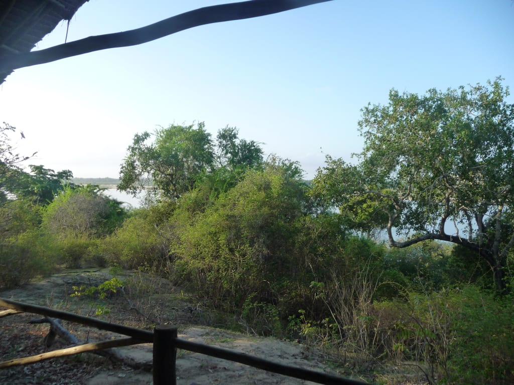 Bild u0026quot;Blick von der Zelt Terrasse aus u0026quot; zu Hotel Rufiji
