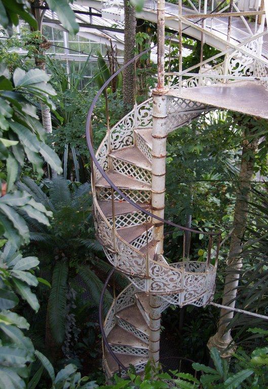 bild botanischer garten wendeltreppe im palmenhaus zu botanischer garten der universit t. Black Bedroom Furniture Sets. Home Design Ideas