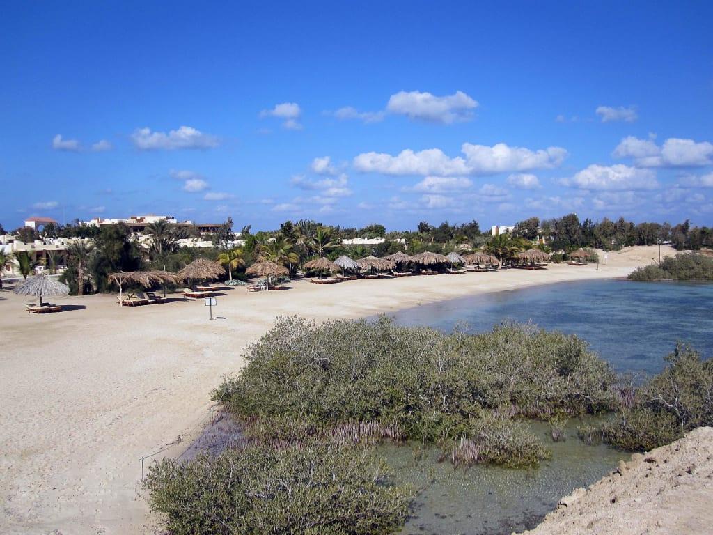 "Bild ""Mangroven am Hotelstrand"" zu Hotel Mangrove Bay Resort in El Quseir"
