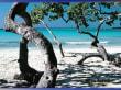 Playa Pesquero - Die Stille des  Morgens