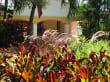 Accueil/Hall  - Hotel Blue Horizons Garden Resort