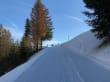 Schneewanderung auf dem Imberg