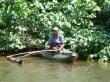 Einsamer Fischer