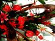 Verschiedene Gartendekos