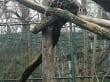 Zoo Besuch Prag