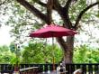 Restaurant river side terrace - Hotel Oriental Kwai Resort