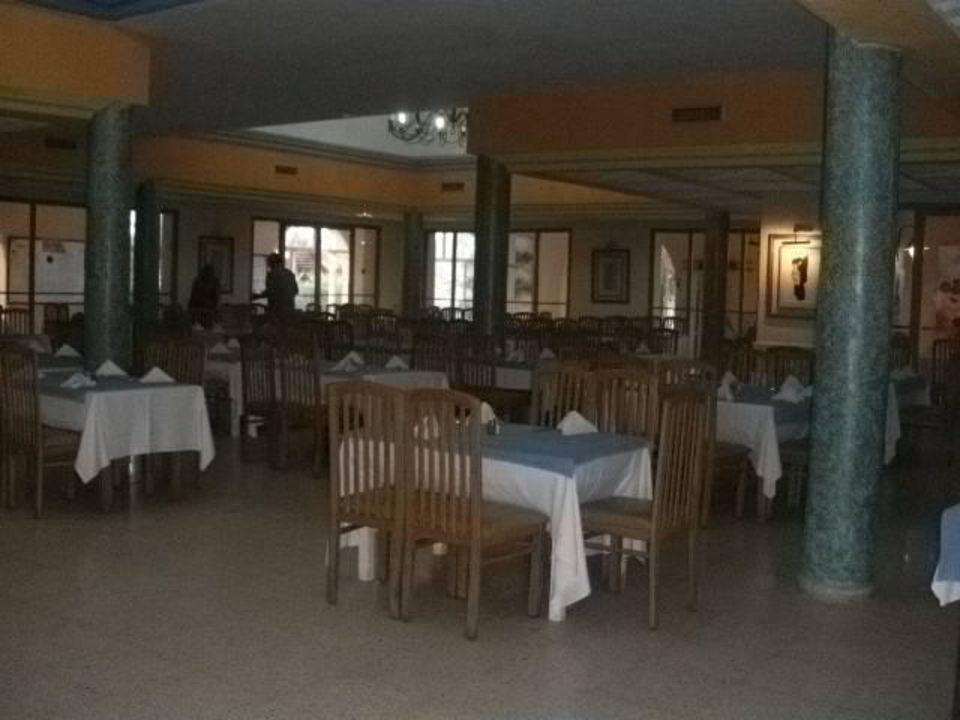 Dattelpalme Hotel Caribbean World Palma (geschlossen)