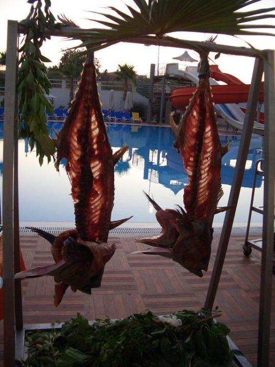 Erste Seite der Süßigkeiten Hotel Narcia Resort Side