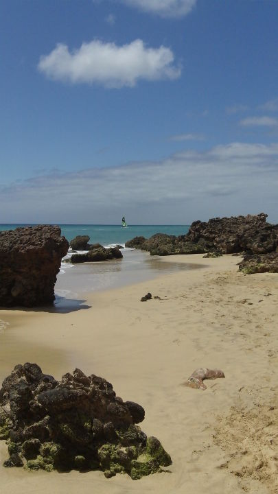 Karibik-Flair IBEROSTAR Hotel Playa Gaviotas Park