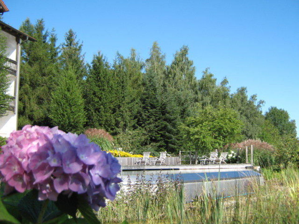 Pool und Gartenansicht im Sommer Hotel Christiane