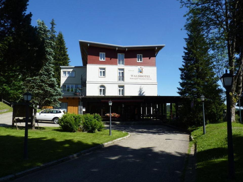 Summer holiday Waldhotel am Notschreipass