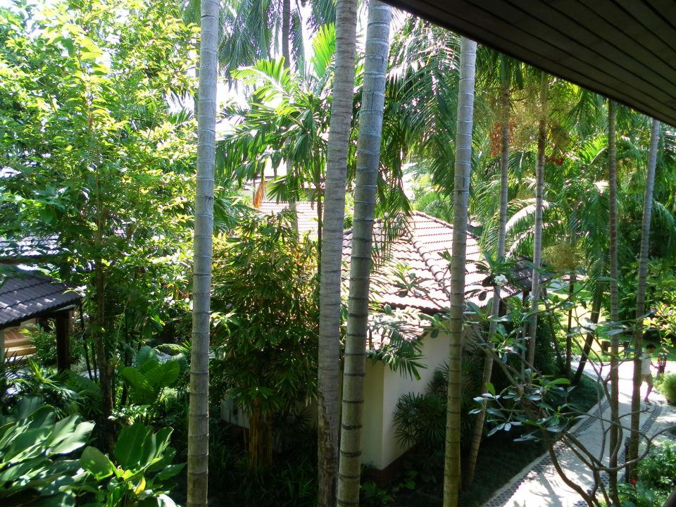 Weg zum Pool & Restaurant Hotel Baan Chaweng Beach Resort & Spa